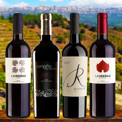 10 Highly Rated Spanish Red Wines